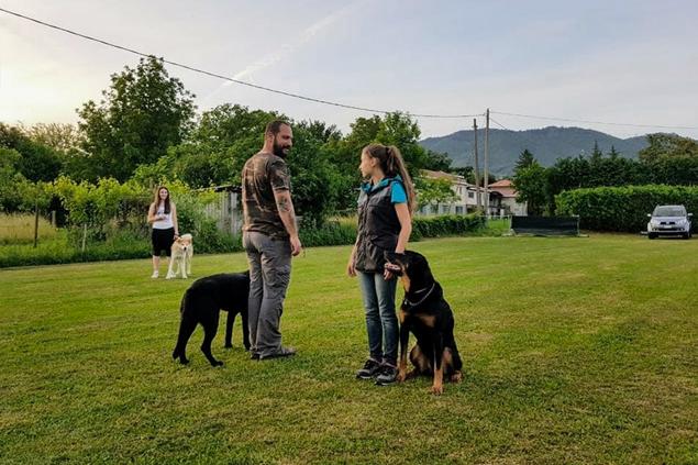 Obbedienza di gruppo - Dog Academy Italia, Addestramento cani Varese