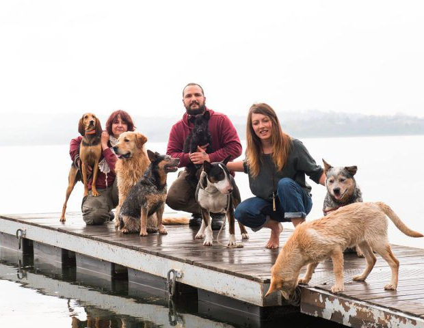 Dog Academy Italia - Educazione, utilità, sport, ricerca e soccorso